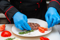 Chef set grilled meat Royalty Free Stock Photo