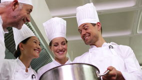 Chef showing colleagues contents of large pot low angle view stock video footage