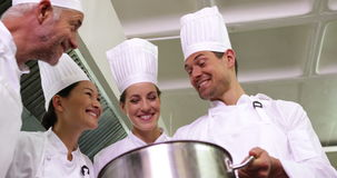 Chef showing colleagues contents of large pot low angle view stock video