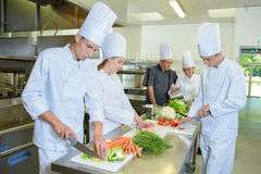 Chef supervising team trainees stock images