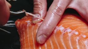 Chef takes out bones from the salmon fillet, cutting fish on slices for cooking sushi in 4k resolution in slow motion stock video footage