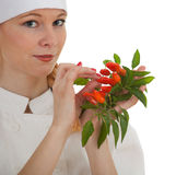 Chef woman with bunch of chilli, pepperoni Stock Photos