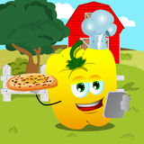 Chef yellow bell pepper with pizza and tablet on a farm Stock Image