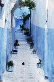 chefchaouen详细资料房子典型的摩洛哥 免版税图库摄影