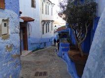 Chefchaouen, голубой город Марокко Стоковые Изображения