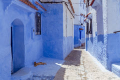 Chefchaouen Royalty Free Stock Image