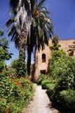 chefchaouen kasbah morocco Royaltyfri Fotografi