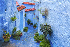 The beautiful blue medina of Chefchaouen, the pearl of Morocco stock photography
