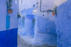 Beautiful blue wall in Chefchaouen, Morocco. Berber royalty free stock images