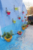 Chefchaouen street with colorful flower pots Stock Images