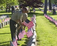 Chefe dos escoteiros que p?e bandeiras sobre sepulturas militares imagens de stock royalty free