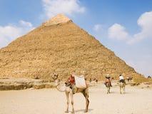 chefren金字塔 库存照片