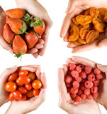 Chefs hands with various fruit Royalty Free Stock Photography