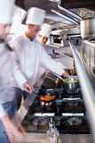 Chefs preparing food in the kitchen Royalty Free Stock Photo