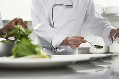Chefs Preparing Salad. Closeup midsection of chefs preparing salad in the kitchen Royalty Free Stock Image