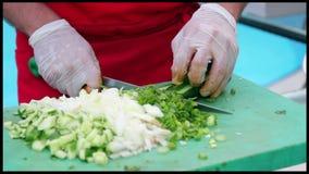 Chefs professionnels préparant la nourriture dans une cuisine commerciale banque de vidéos