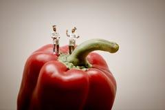 Chefs talking. Macro photo Stock Photography