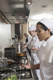 Chefs Working Together In Commercial Kitchen Royalty Free Stock Photos