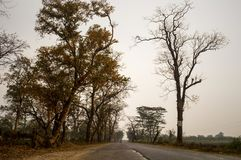 Chegada do outono em Bengal foto de stock