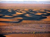 Chegaga Dunes, Sahara Desert. Swirling sand dunes in Sahara Desert in Morocco. Ripple effect Royalty Free Stock Photo