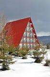 cheia czerwieni dach Fotografia Stock