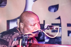 Cheick Tidiane Seck performs Royalty Free Stock Images