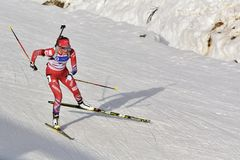 Cheile Gradistei, Roamania - 30 de enero: Competidor desconocido en IBU Youth& Junior World Championships Biathlon Fotos de archivo