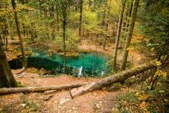 Cheile nerei beusnita national park romania stock photos