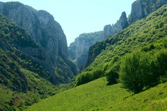 Cheile turzii mountains Royalty Free Stock Image