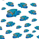 Cheilinus undulatus pattern. Napoleon fish. Humphead wrasse stock illustration
