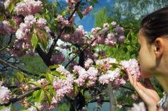Cheirando as flores 1 Imagens de Stock Royalty Free