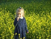Cheire as flores Imagem de Stock Royalty Free