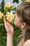 Cheiro das rosas Foto de Stock Royalty Free