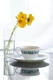 Cheiro do chá Fotos de Stock Royalty Free