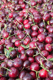 Chelam Cherry pile Royalty Free Stock Images