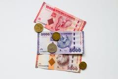 Chelines tanzanos con el elefante, el rinoceronte y el león foto de archivo libre de regalías