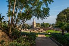 Chellah大墓地废墟  拉巴特 摩洛哥 免版税库存照片