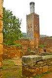 chellah in Africa vecchio deteriorato romano e si immagine stock libera da diritti