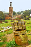chellah i Marocko africa minaret arkivfoton