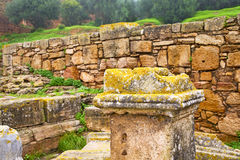 chellah Marocco Africa immagine stock
