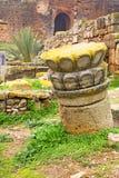 chellah Marocco Africa il vecchio romano fotografia stock libera da diritti