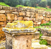 Chellah  in morocco africa the old roman deteriorated monument a Stock Images