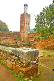 Chellah  in morocco africa the old roman deteriorated monument a Stock Photography