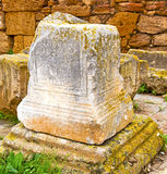 chellah  in morocco africa the old tombstone Royalty Free Stock Photos