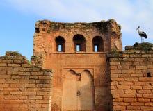 Chellah Rabat, Marocko Arkivfoton