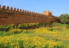 Chellah Rabat, Marocko Arkivfoto