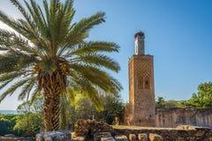 Chellah Sala Colonia - minaret meczetowe ruiny, Rabat, Maroko Obrazy Royalty Free