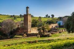 Chellah sanktuarium w Rabat, Maroko zdjęcia royalty free