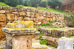 chellah w Morocco fotografia royalty free