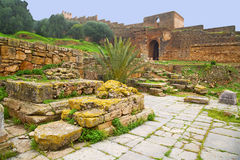 chellah w Morocco Africa obraz royalty free